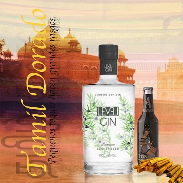 Pack Gin Tonic con ginebra Level y tónica Abbondio