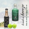 Pack gintonic con ginebra William Chase y tónica Monelli