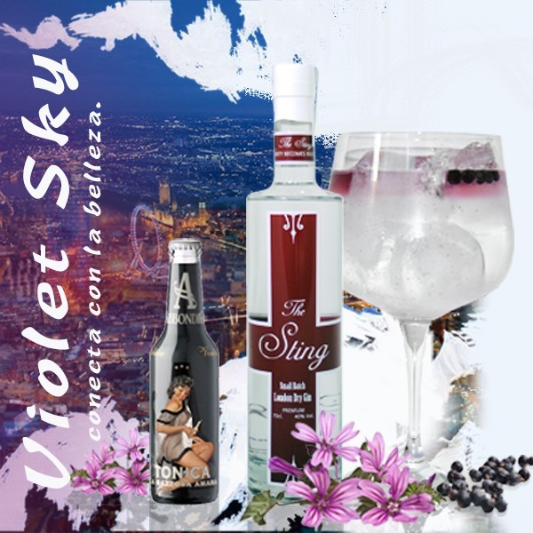 Pack Gintonic con The Sting Gin y tónica Macario