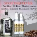 "Gin Tonic con Boë superior Gin y Fever Tree Mediterranean ""Scottish Fever"""
